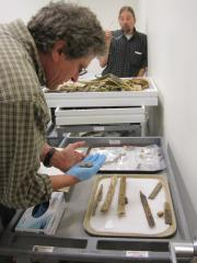 Pete Bowers looks at some items from the UA Museum collection.