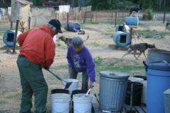 Joe and Pam Redington prepare breakfast for their dogs at Iditarod Kennels